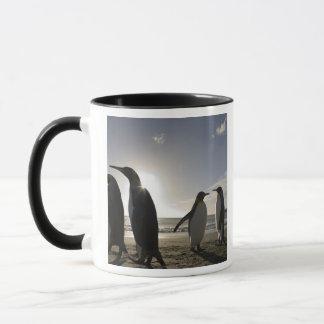 L'Antarctique, île du sud R-U de la Géorgie), roi Mugs