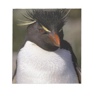 L'Antarctique, îles Sous-Antarctiques, sud 5 Blocs Notes