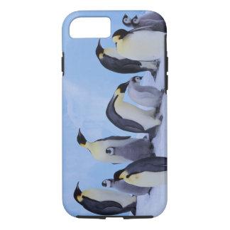 L'Antarctique, pingouin d'Emporer ((Aptenodytes Coque iPhone 8/7