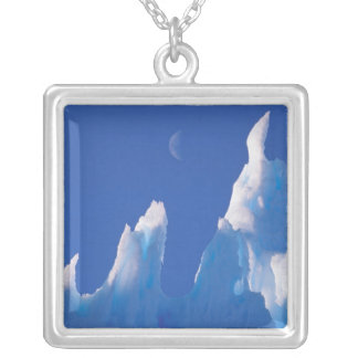 L'Antarctique, territoire antarctique australien Collier