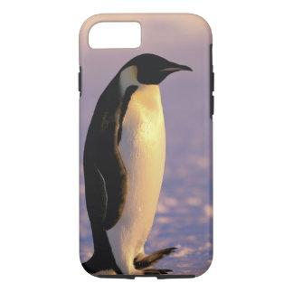 L'Antarctique, territoire antarctique australien, Coque iPhone 7