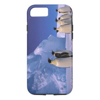 L'Antarctique, territoire antarctique australien, Coque iPhone 8/7