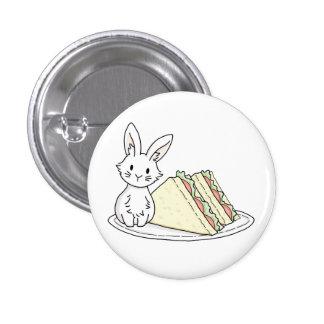 Lapin avec des sandwichs badges