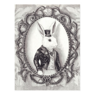 Lapin blanc - carte postale