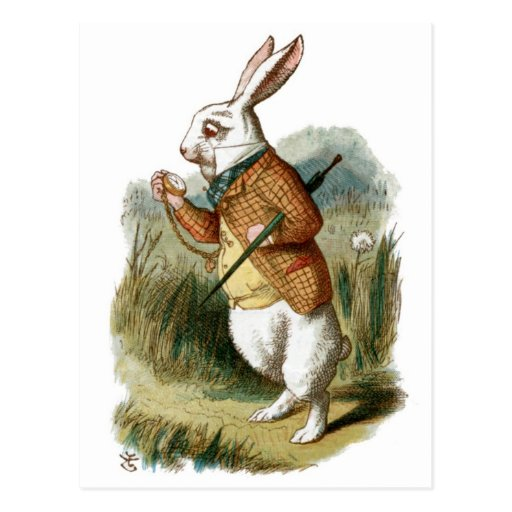 Lapin blanc d 39 alice au pays des merveilles cartes postales zazzle - Lapin d alice au pays des merveilles ...
