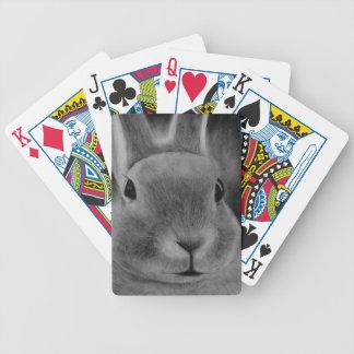 Lapin Cartes À Jouer