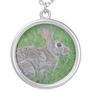 lapin collier