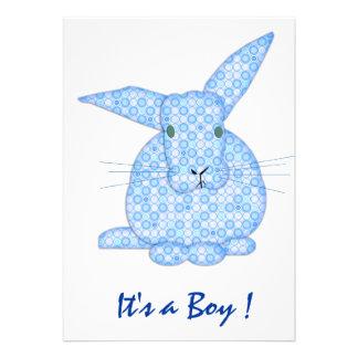 Lapin de bébé c est un garçon