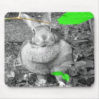 Lapin géant flamand B et W avec le feuille vert Tapis De Souris