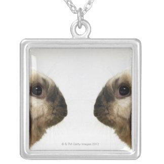 Lapin regardant le lapin pendentif carré