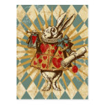 Lapin vintage de blanc d'Alice Carte Postale