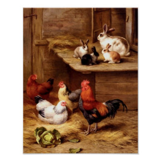 Lapins d'animaux de ferme d'animaux familiers de p poster