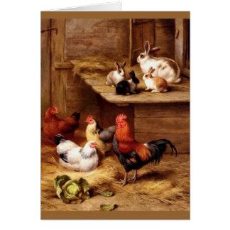Lapins d'animaux de ferme de poules de coq de cartes