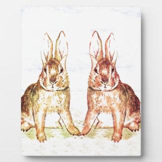 Lapins Plaques D'affichage