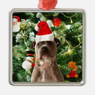 L'arbre de Noël de chien de Pitbull ornemente le Ornement Carré Argenté