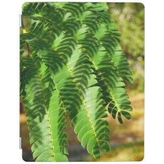 L'arbre en soie persan laisse la couverture d'iPad Protection iPad