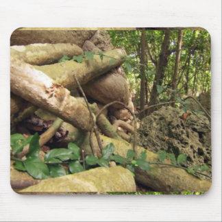 L'arbre géant enracine le voyage à l'amusement de tapis de souris