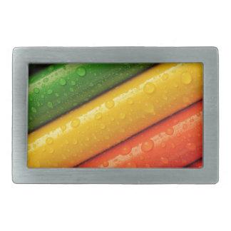 L'arc-en-ciel coloré de crayons de crayons colore boucle de ceinture rectangulaire