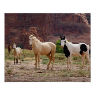 L'Arizona, réserve indienne de Navajo, Chinle, Posters