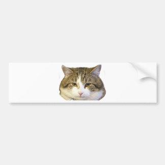 Larry le visage de chat de Downing Street Autocollant De Voiture