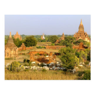 L'Asie, Myanmar (Birmanie), Bagan (païen). Passage Carte Postale
