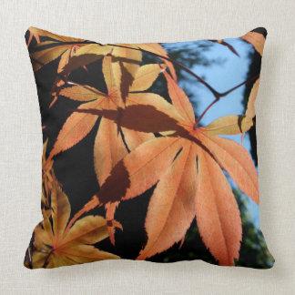 L'automne colore - les érables japonais - des oreillers