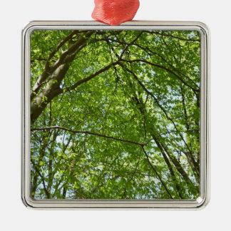 L'auvent du ressort part de la scène verte de ornement carré argenté