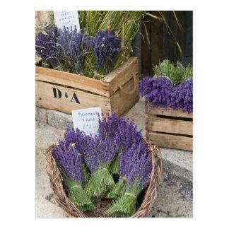 Lavendar à vendre, Provence, France Cartes Postales