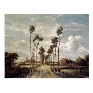 L'avenue chez Middelharnis, 1689 Carte Postale
