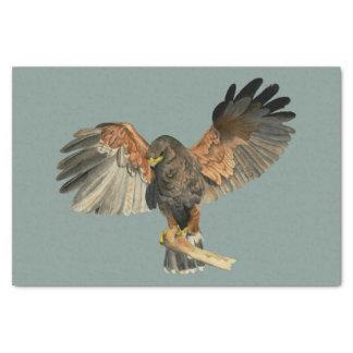 Le battement de faucon s'envole la peinture papier mousseline