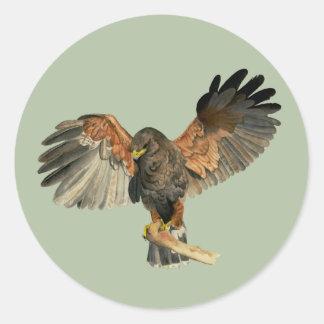 Le battement de faucon s'envole la peinture sticker rond