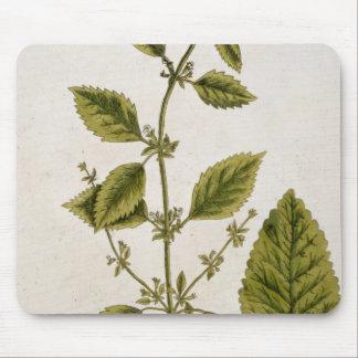 """Le baume, plaquent 27 """"d'un de fines herbes curieu tapis de souris"""