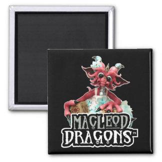 Le bébé de DM bloque l'aimant de logo de dragon Magnet Carré