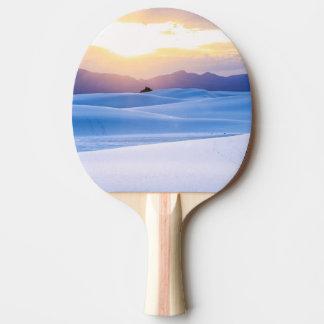 Le blanc ponce le monument national 3 raquette de ping pong