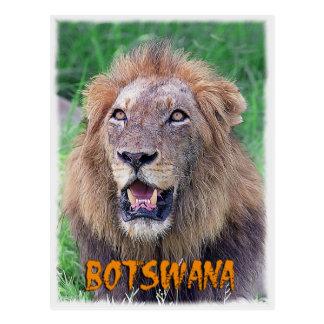 Le Botswana Carte Postale