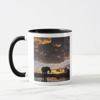 Le Botswana, parc national de Chobe, éléphant Mug