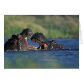 Le Botswana, réservation de jeu de Moremi, Carte De Vœux