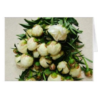 Le bouquet de la pivoine blanche bourgeonne le car cartes de vœux