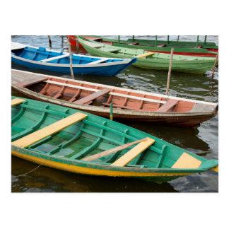 Le Brésil, Amazone, Alter font Chao Carte Postale