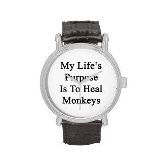 Le but de la ma vie est de guérir des singes montres