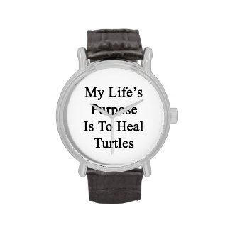 Le but de la ma vie est de guérir des tortues montres cadran