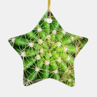 Le cactus Dble-A dégrossi ornement d'étoile