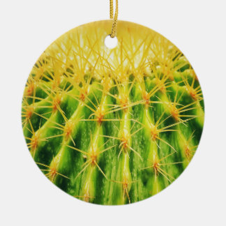 Le cactus vert Dble-a dégrossi ornement