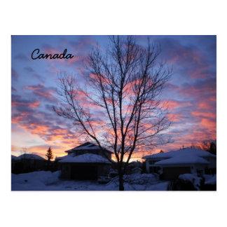 Le Canada Carte Postale