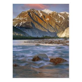 Le Canada, Colombie-Britannique, Alsek River Carte Postale