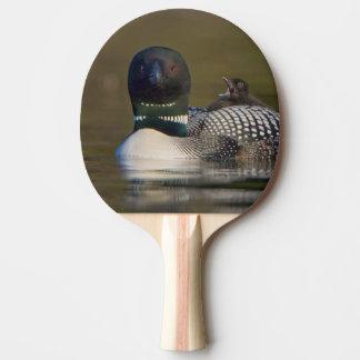 Le Canada, Colombie-Britannique, dingue commun, Raquette De Ping Pong