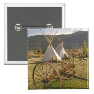 Le CANADA, Colombie-Britannique, Enderby. Tepees e Pin's