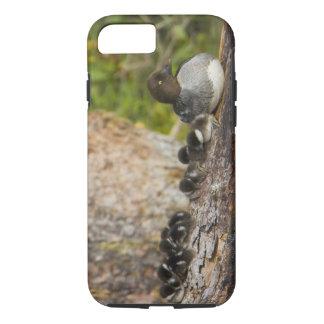 Le Canada, Colombie-Britannique, Goldeneye commun, Coque iPhone 7