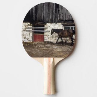 Le Canada : Ontario, péninsule de Bruce, cap Chin, Raquette Tennis De Table