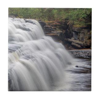 Le canyon tombe sur la rivière d'esturgeon près de petit carreau carré